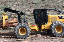 Weiler vrea să achiziționeze divizia de utilaje forestiere Caterpillar