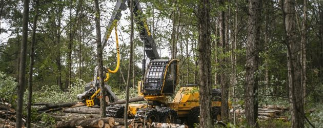 Tigercat introduces the highly anticipated 1165 wheel harvester