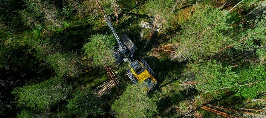 Metoda Cut-to-Length este viitorul în exploatarea forestieră