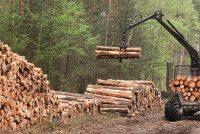 Anvelope BKT pentru exploatare forestieră
