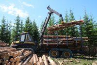 New Ponsse loaders for efficient load handling